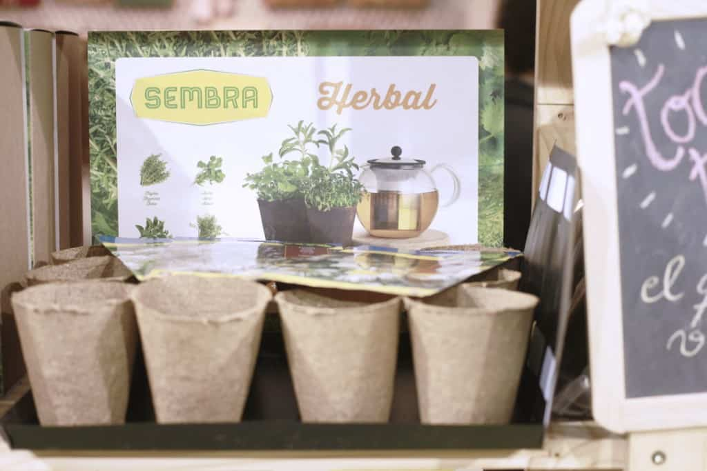 Kits fáciles para huerto en casa herbal