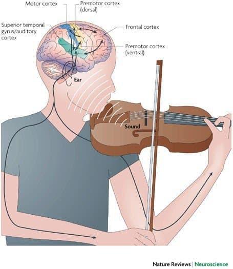 aprender violín de niños