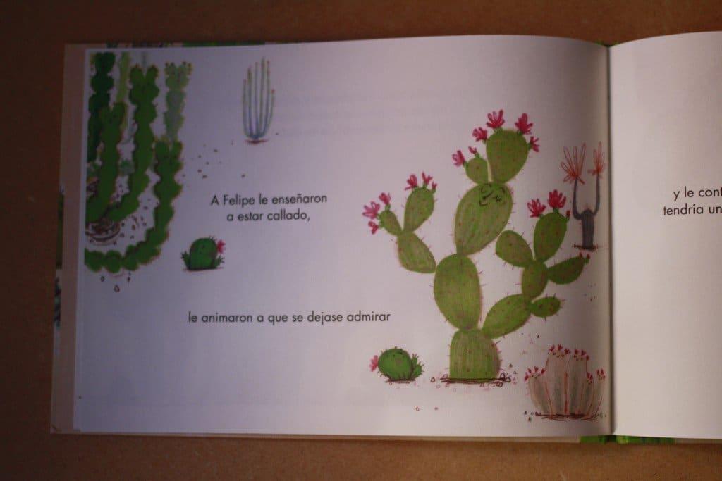 cactus para abrazar
